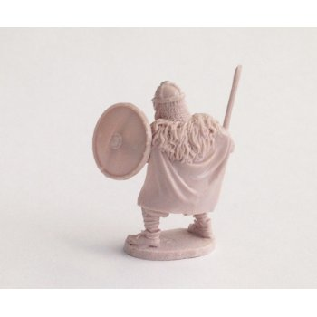 Viking warlord