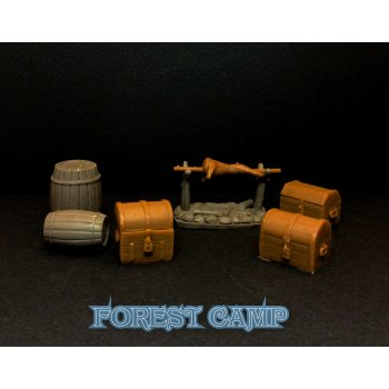 Forest camp